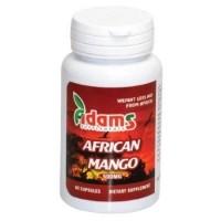 AFRICAN MANGO 500MG 60CPS ADAMS VISION