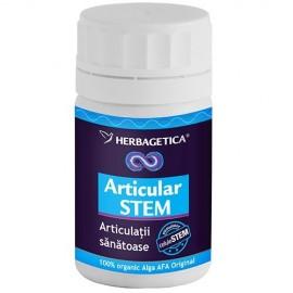 ARTICULAR STEM 30cps HERBAGETICA