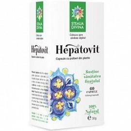 HEPATOVIT 60cps SANTO RAPHAEL