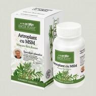 ARTROPLANT CU MSM 60CPR DACIA PLANT