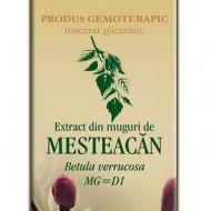 EXTRACT MESTEACAN MUGURI 50ML Betula verrucosa MG=D1  PLANTEXTRAKT