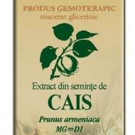 EXTRACT SEMINTE CAIS 50ML Prunus armeniaca MG=D1  PLANTEXTRAKT