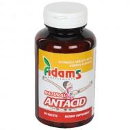 NATURAL ANTACID 90CPR MASTICABILE ADAMS VISION