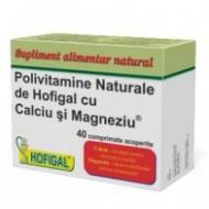 POLIVITAMINE 40CPR HOFIGAL