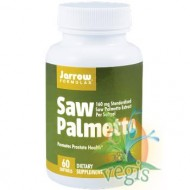 SAW PALMETTO 60cps SECOM