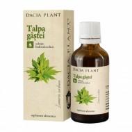 TINCTURA TALPA GASTEI 50ML DACIA PLANT