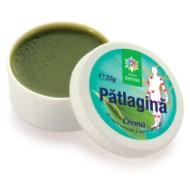 Crema  naturala cu PATLAGINA 20g Santo Raphael