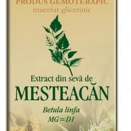 EXTRACT SEVA MESTEACAN 50ML Betula linfa MG=D1 PLANTEXTRAKT