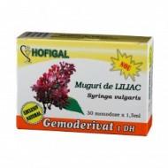 GEMODERIVAT LILIAC 30 monodz HOFIGAL
