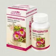 HARPAGOPHYTUM 60CPR  DACIA PLANT