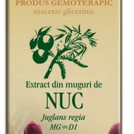 EXTRACT MUGURI NUC 50ML  Juglans regia MG=D1   PLANTEXTRAKT