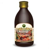 SIROP CATINA (indulcitor natural Stevia) 250ML HYPERICUM