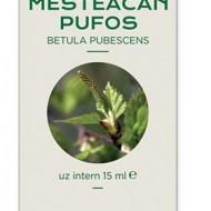 CONCENTRAT MUGURI MESTEACAN PUFOS 15ML Betula pubescens MG PLANTEXTRAKT