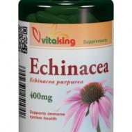 ECHINACEA 400MG 100CPS Vitaking