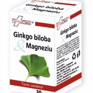 GINKGO BILOBA&MAGNEZIU 30CPS Farmaclass