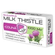 MILK THISTLE + COLINA 30CPR ZDROVIT