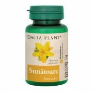 SUNATOARE 60CPR DACIA PLANT