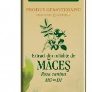 Extract din mlădiţe de MACES - Rosa canina MG=D1 PLANTEXTRAKT