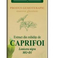 EXTRACT MLADITE CAPRIFOI 50ML  Lonicera nigra MG=D1  PLANTEXTRAKT