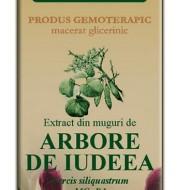 EXTRACT DIN MUGURI DE ARBORE IUDEEA 50ML Cercis siliquastrum MG=D1  PLANTEXTRAKT