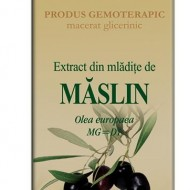 EXTRACT MLADITE MASLIN 50ML Olea europaea MG=D1 PLANTEXTRAKT
