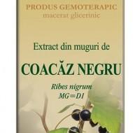 EXTRACT MUGURI COACAZ NEGRU 50ML Ribes nigrum MG=D1 PLANTEXTRAKT
