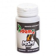 MSM 1000MG 30CPS ADAMS VISION