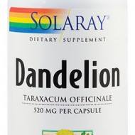 DANDELION  (PAPADIE) 520MG 100CPS SECOM