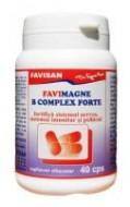 FAVIMAGNE + B COMPLEX FORTE 40cps FAVISAN