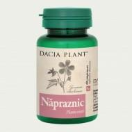 NAPRAZNIC 60CPR DACIA PLANT