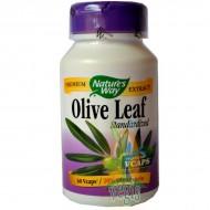 OLIVE LEAF 60CPS (20% OLEUROPEIN) SECOM