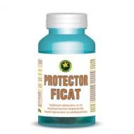 PROTECTOR FICAT 60CPS HYPERICUM