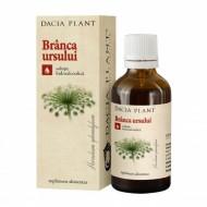 TINCTURA BRANCA URSULUI 50ML DACIA PLANT