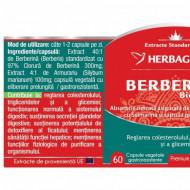 BERBERINA BIO ACTIVA 30CPS HERBAGETICA