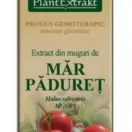 EXTRACT DIN MUGURI DE MAR PADURET 50ML Malus sylvestris MG=D1 PLANTEXTRAKT