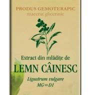 EXTRACT MLADITE LEMN CAINESC 50ML Ligustrum vulgare MG=D1    PLANTEXTRAKT