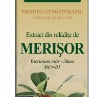 EXTRACT MLADITE MERISOR 50ML Vaccinium vitis idaea MG=D1 PLANTEXTRAKT