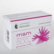 MSM 500MG 60CPR REMEDIA