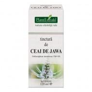 TINCTURA CEAI DE JAWA 120ML PLANTEXTRAKT