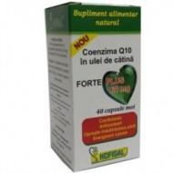 COENZIMA Q10 UL CATINA FORTE+ 60MG 40CPS MOI HOFIGAL
