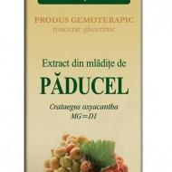 EXTRACT MLADITE PADUCEL 50ML Crataegus oxyacantha MG=D1   PLANTEXTRAKT