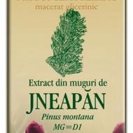 EXTRACT MUGURI JNEAPAN 50ML Pinus montana MG=D1  PLANTEXTRAKT