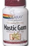 MASTIC GUM 45cps SECOM