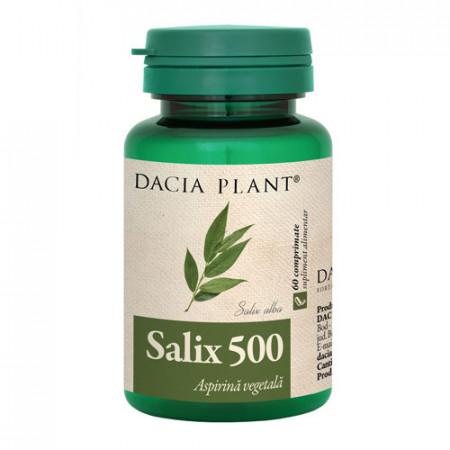 Salix 500, 60cps, Dacia Plant