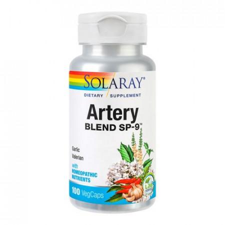 Artery Blend, 100cps, Solaray