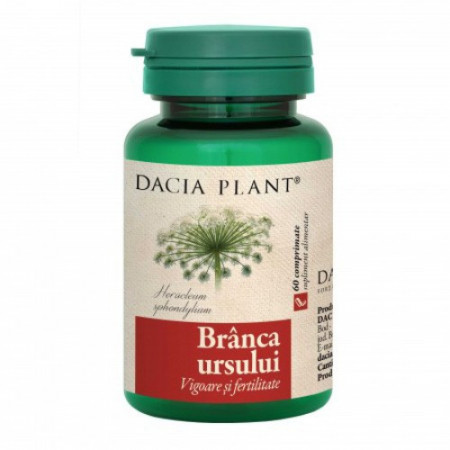 Branca ursului, 60cps, Dacia Plant