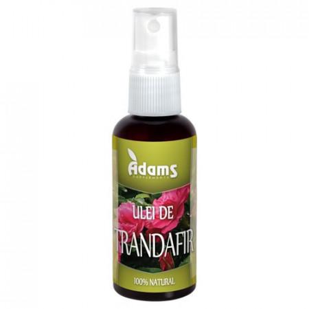 Ulei de Trandafir, 50ml, Adams Vision