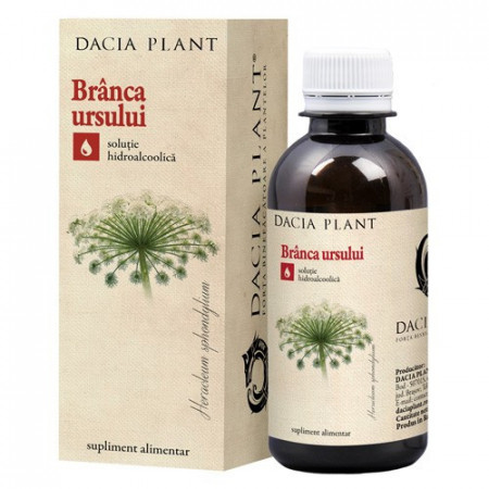 Branca ursului tinctura, 200ml, Dacia Plant