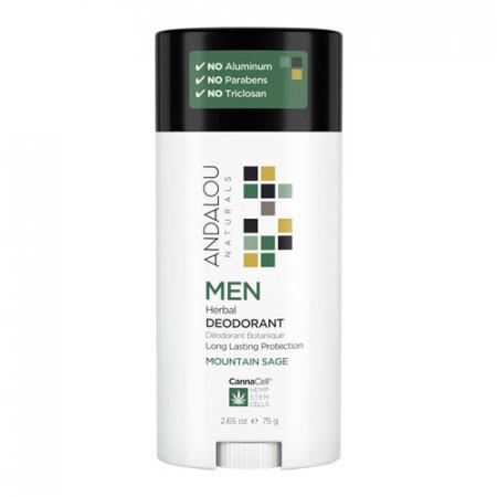 MEN Herbal Deodorant - MOUNTAIN SAGE, 75g, Andalou