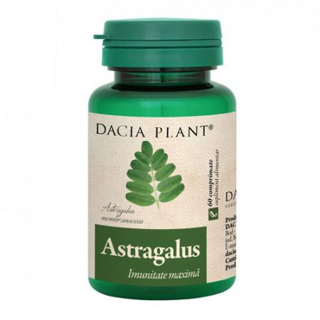 Astragalus, 60cps, Dacia Plant